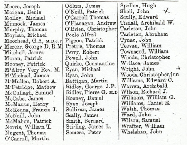 Kings County Ireland Free Genealogy Records pic